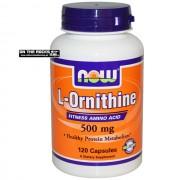 ORNITHINE (NOW) DESPORTO